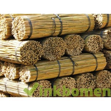 Bamboestokken 270cm 9v. 20-22mm